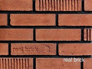 REAL BRICK. RB 2-10 mono Кирпичный Плитка: 240*60*15 0,63(36шт)