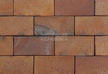 Тротуарный клинкер ABC Ember 200х100х52 1