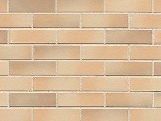 Клинкерная плитка фасадная ABC Klinker Elmshorn-Ockergrau NF10