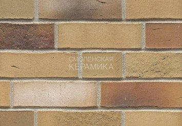 Клинкерный кирпич Feldhaus Klinker K915NF vario sabiosa elabi 1