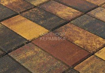 Тротуарная плитка BRAER Прямоугольник Color Mix Мальва, 60 мм 1