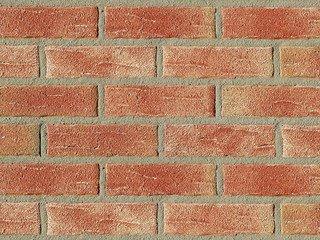 Клинкерная плитка фасадная Röben AARHUS красно-пестрый NF14